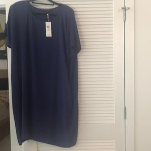NEW Eileen Fisher Silk Dress